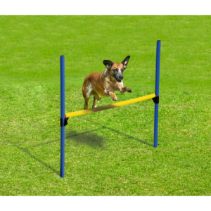 Fun Agility Starter Set für Hunde